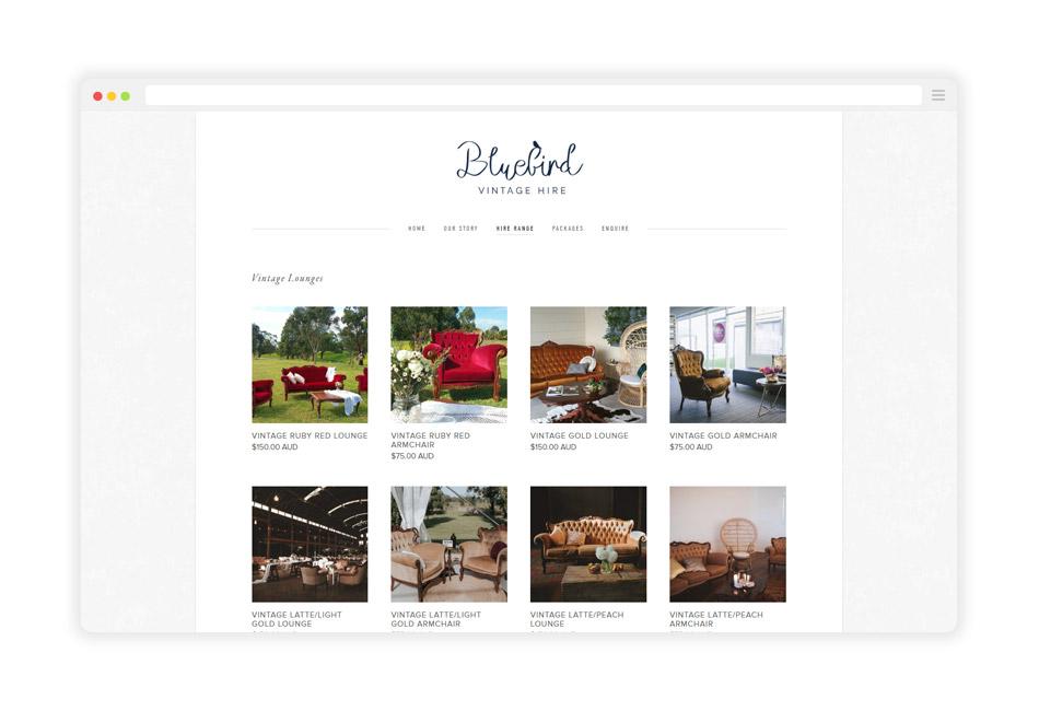 Bluebird-Website-Packages-Mockup